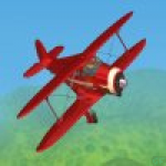 Flight 3D Aerobatic Training