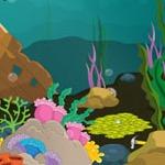 Underwater Fish Escape